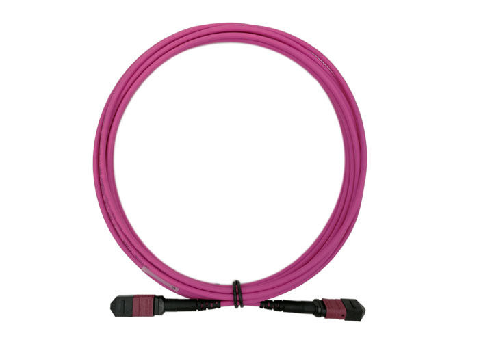 Fiber Optical 24 MTP MPO Patch Cord 5M OM4 24 Core Magenta Low Loss 0.3dB type B